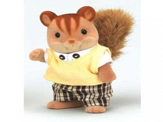 Walnut Squirrel Father (*)