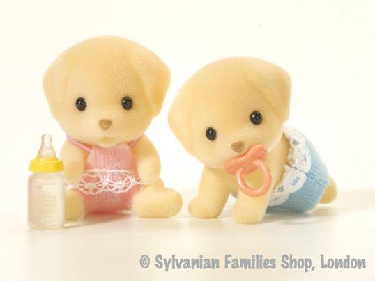 Fenton Yellow Labrador Twins