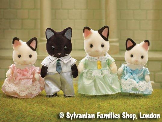 Marlowe Tuxedo Cat Family
