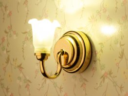 [DB] Tulip Wall Light