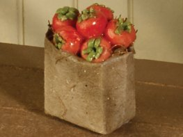[DB] Brown Bag of Tomatoes