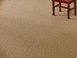 [DB] Carpet - Mushroom