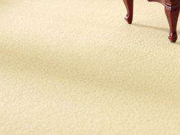 [DB] Carpet - Cream