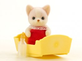 [SF] Lopez Chihuahua Baby