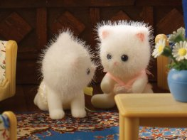 [SF] Persis Persian Cat Twins