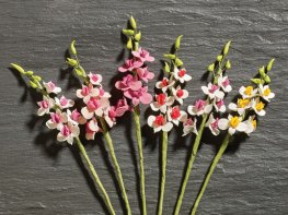 [DB] Flower Stems - 6 Gladioli